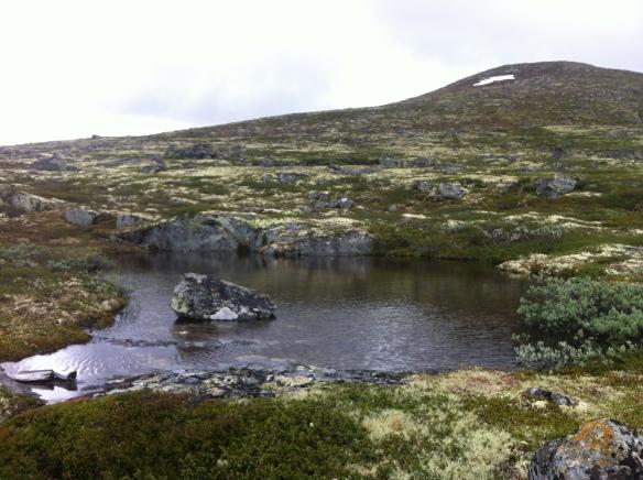 alpine pond near Dovre