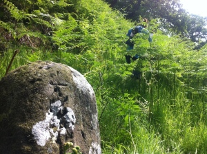ancient pilgrim stone at stream ford