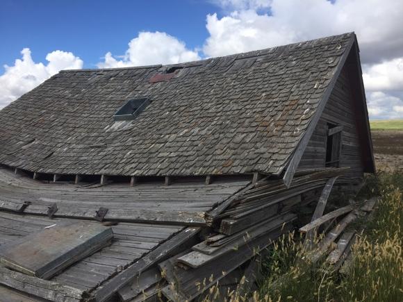 abandoned barn on walk.jpg