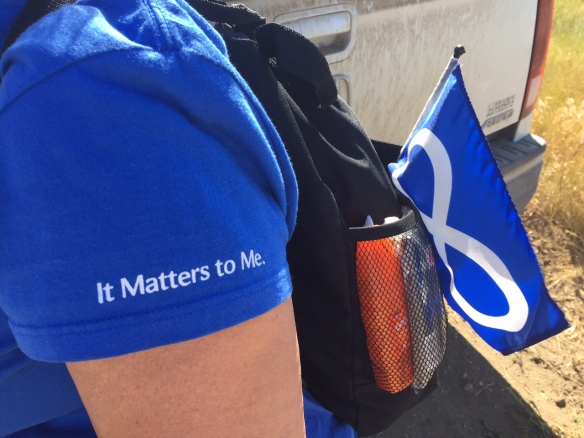 It Matters Metis Flag