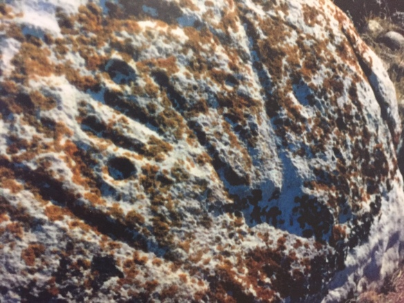 petroglyph Herschel