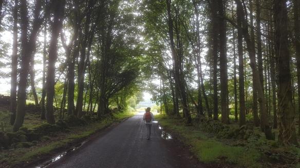 Christine walking through forest Rain